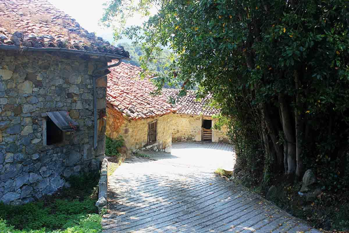 pueblo rural liebana
